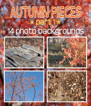 Autumn Pieces 2D Graphics Merchant Resources Morkovka