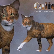 CWRW Calicos for the HW House Cat image 7