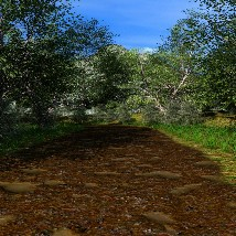Dirt Road image 3