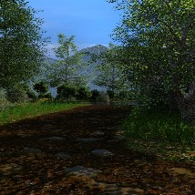 Dirt Road image 7