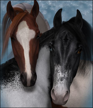 Pinto Overlays for the HiveWire Horse 3D Figure Assets DreamWeaver_Designs