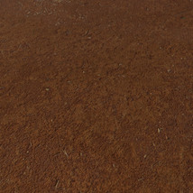Panoramic Texture Resource: Red Sands image 1
