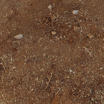 Panoramic Texture Resource: Red Sands image 7