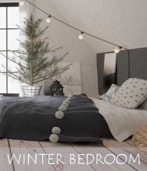 Winter Bedroom 3D Models TruForm