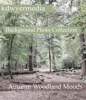 Autumn Woodlands Moods 2D Graphics kdwyermedia