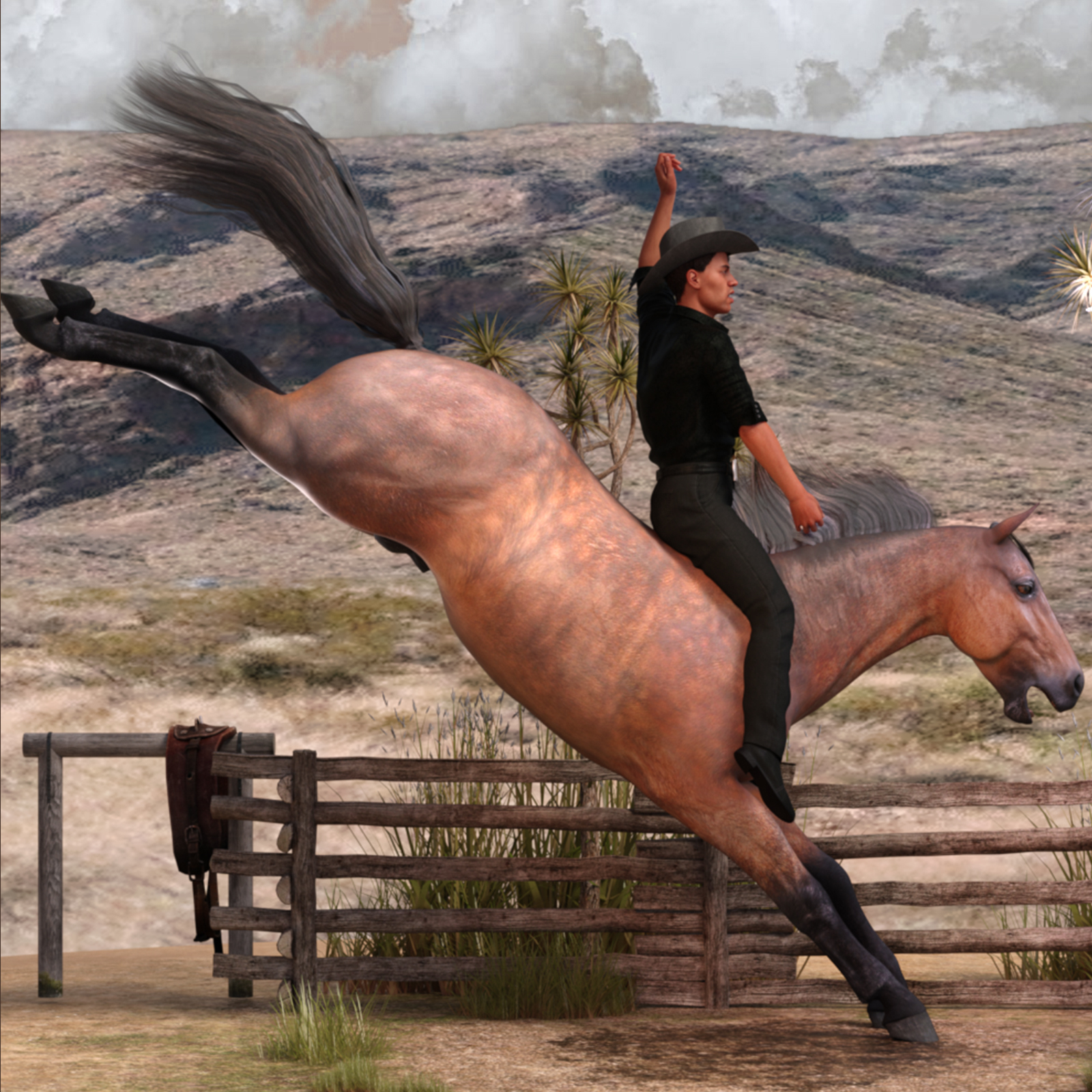 Horse And Rider Poses