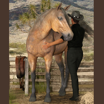 Horse And Rider Poses image 1