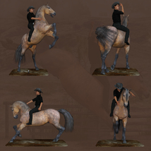 Horse And Rider Poses image 3