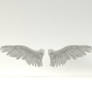 Angel or Bird Wings - Extended License 3D Game Models : OBJ : FBX 3D Models Extended Licenses rolffimages