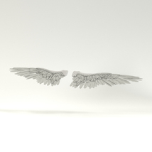 Angel or Bird Wings - Extended License image 2
