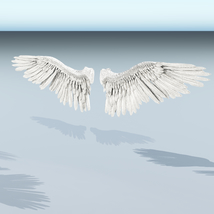 Angel or Bird Wings - Extended License image 4