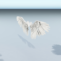 Angel or Bird Wings - Extended License image 5