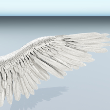 Angel or Bird Wings - Extended License image 7