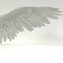 Angel or Bird Wings - Extended License image 8