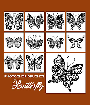 PB - Butterfly 2D Graphics Merchant Resources Atenais