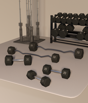 Swole: Free Weights for Genesis 3 and 8 Females 3D Models TheNextLevel01