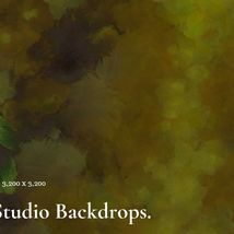12 Painted Studio Backdrops image 12