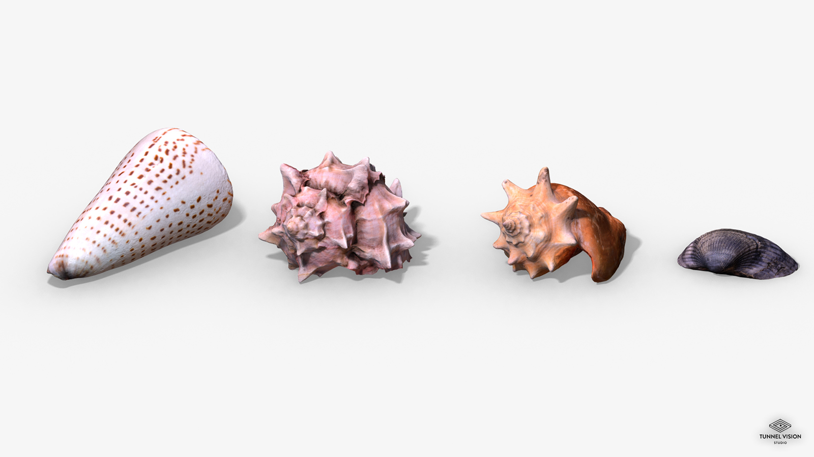 Photorealistic Seashells Collection - Scanned PBR - Extended License by TunnelVision