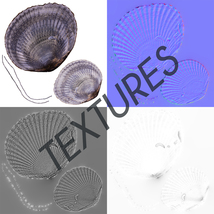 Photorealistic Seashells Collection - Scanned PBR - Extended License image 6