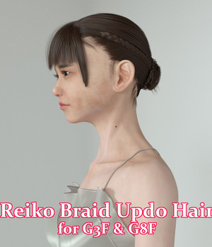 Reiko Braid Updo Hair for G3F & G8F 3D Figure Assets natrium