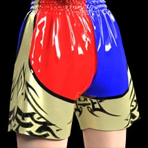Muay Thai Textures for Boxing Trunks image 3