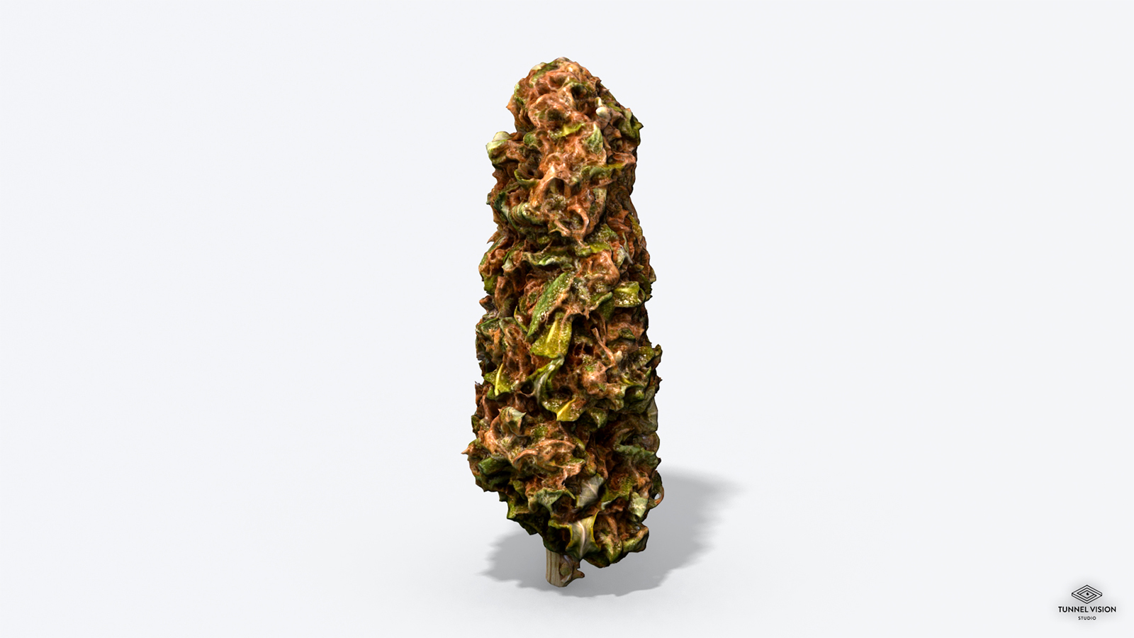 Marijuana Bud - Photoscanned PBR  Extended License by TunnelVision