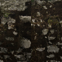 Panoramic Texture Resource: Worn Walls - Extended License image 5
