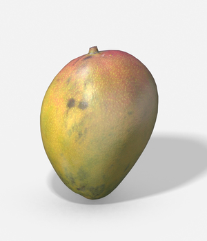Exotic Fruit Mango - Photoscanned PBR Extended License 3D Game Models : OBJ : FBX 3D Models Extended Licenses TunnelVision