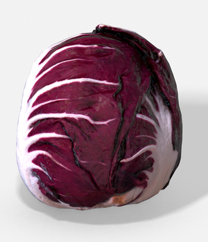 Vegetable Red Chicory - Photoscanned PBR - Extended License 3D Game Models : OBJ : FBX 3D Models Extended Licenses TunnelVision