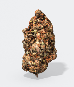 Marijuana Bud 2 - Photoscanned PBR - Extended License 3D Game Models : OBJ : FBX 3D Models Extended Licenses TunnelVision