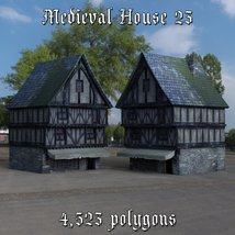 Medieval World Set 4 for DAZ Studio image 4