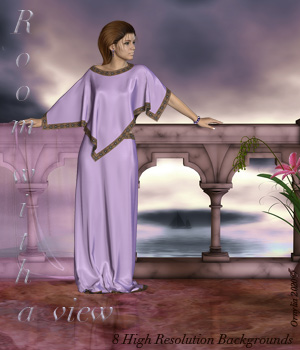Room with a view  2D Graphics ornylia