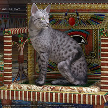 CWRW Exotics 1 for the HW House Cat image 1