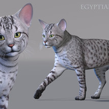 CWRW Exotics 1 for the HW House Cat image 6