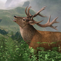 CWRW Red Stag for the HiveWire Mule Deer image 4