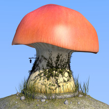 Real mushroom house for Daz Studio image 4