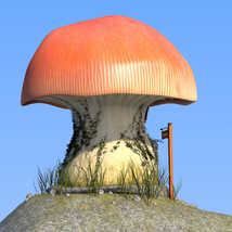 Real mushroom house for Daz Studio image 5