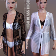 High Class Lingerie for Genesis 8 Females image 4