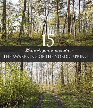 The Awakening Of The Nordic Spring  2D Graphics HWW0