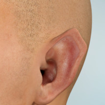 MR Funky Ears for L'Homme image 3