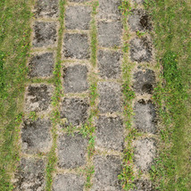 Panoramic Texture Resource: Paths 1 - Extended License image 1