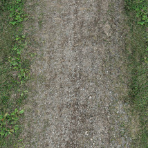 Panoramic Texture Resource: Paths 1 - Extended License image 4