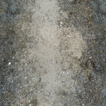 Panoramic Texture Resource: Paths 1 - Extended License image 6