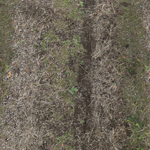 Panoramic Texture Resource: Paths 1 - Extended License image 7