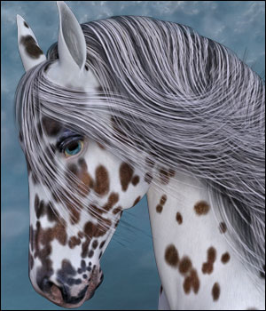 Appaloosa Overlays for the HiveWire Horse 3D Figure Assets DreamWeaver_Designs