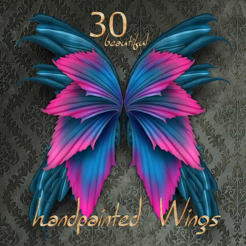 ~HandPainted Wings~