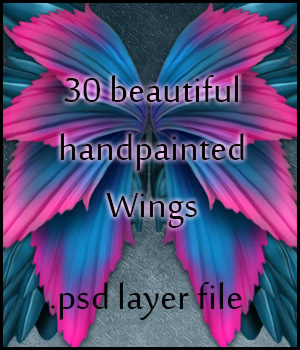 ~HandPainted Wings~ 3D Models 2D antje