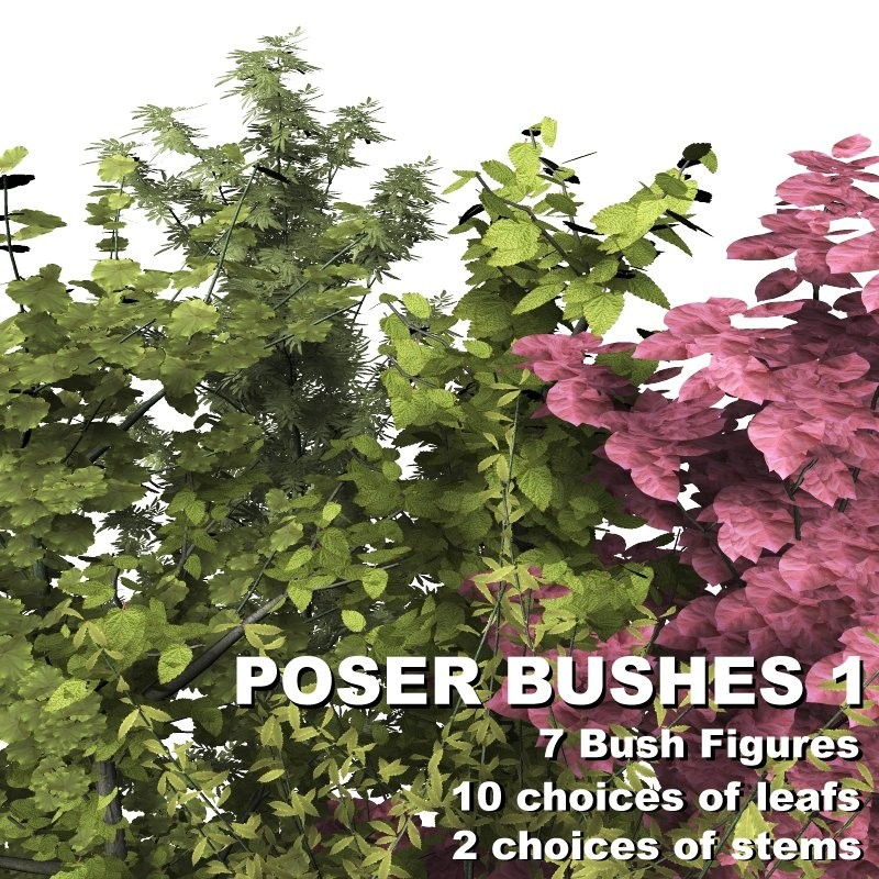 Poser Bushes 1 by designfera