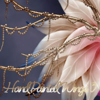~HandPainted Wings~ - #3 2D antje