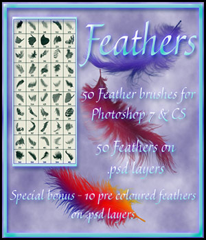 Feather Brushes 2D Graphics antje